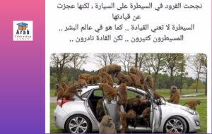 بين التعليم والتعلم بقلم الدكتور محمود المساد صوره توضيحيه